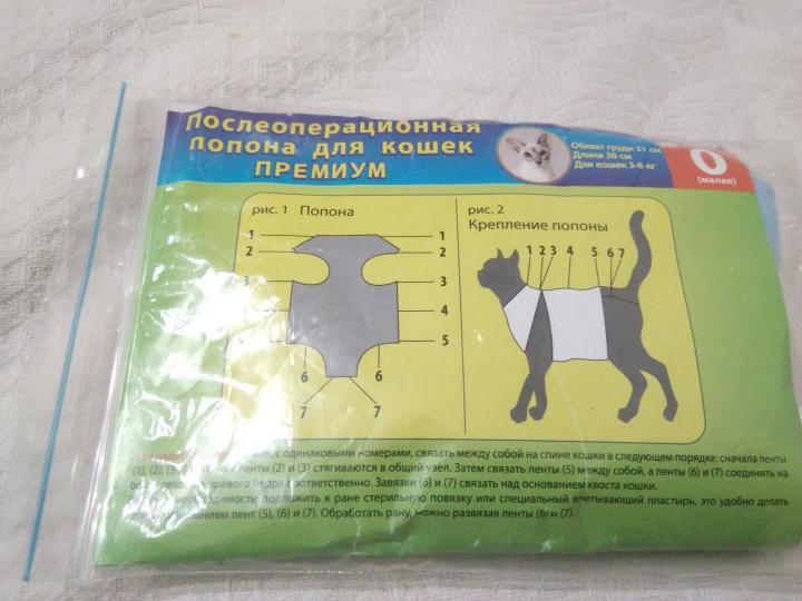 Попона для кошки после стерилизации: как сделать своими руками?