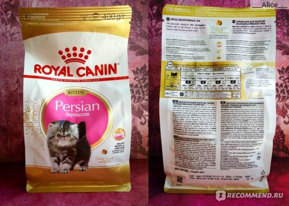 Корм для кошек феликс (felix) - отзывы и советы ветеринаров