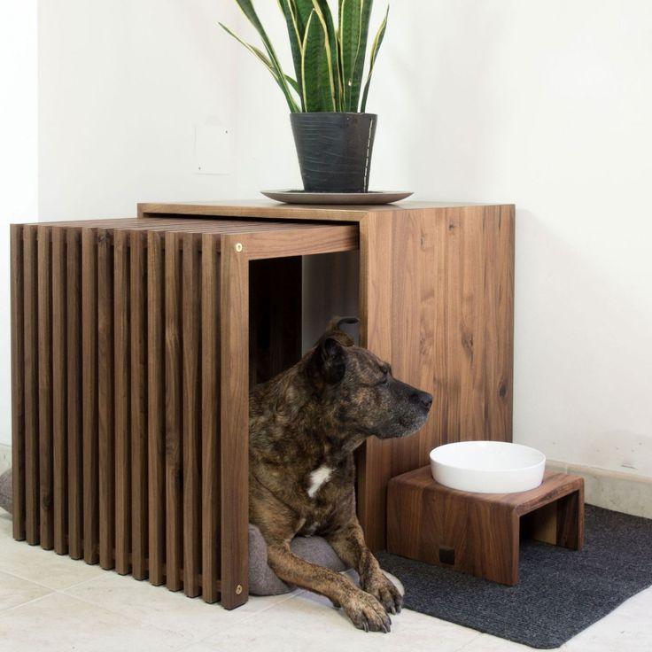 Если ваша собака грызёт мебель