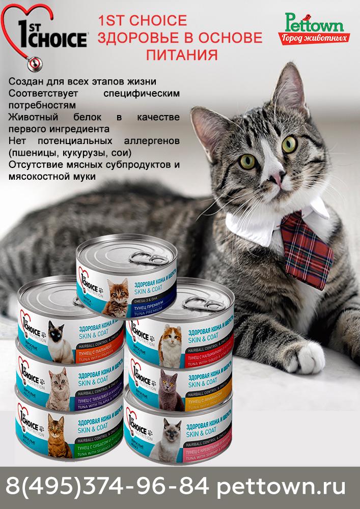 """Корм """"чойс"""" для кошек и котят, сухой и влажный: состав канадского кошачьего продукта"""