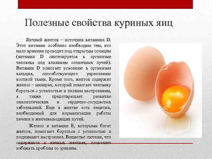 Можно ли собакам яйца вареные, можно ли щенку вареное яйцо