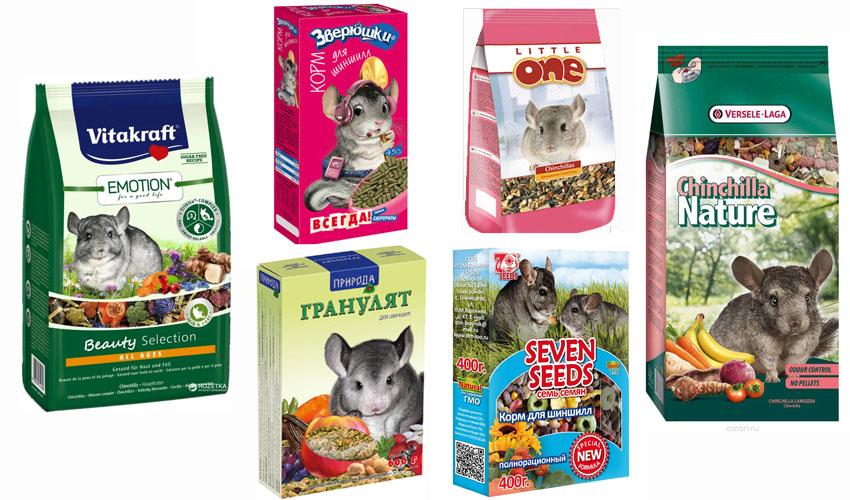 Чем кормить шиншиллу в домашних условиях? чем кормить шиншиллу можно, а чем нельзя? :: syl.ru