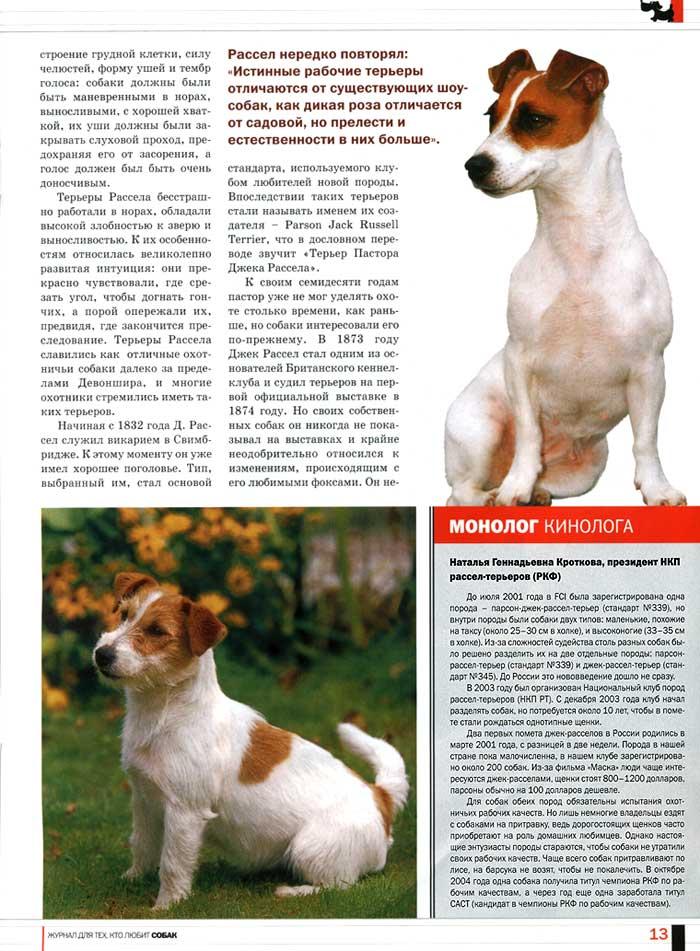 Бриар собака. описание, особенности, уход и цена породы бриар