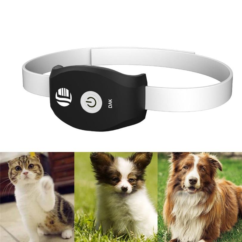 Gps маячок для животных: кошек и собак, джипиэс радио трекер для слежения за животными на ошейник, узнать где питомец