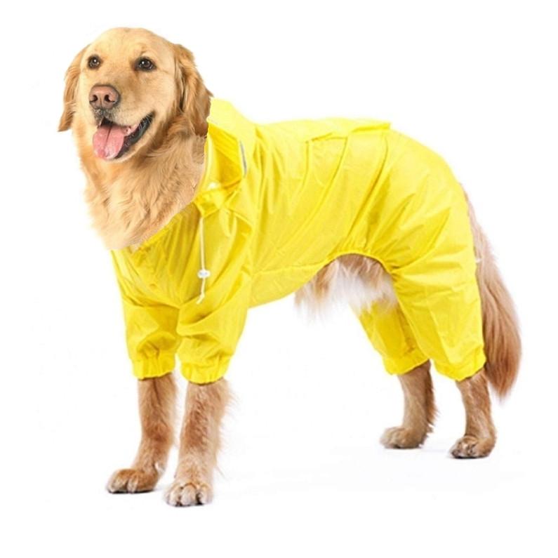 Топ-36 гладкошерстных пород собак