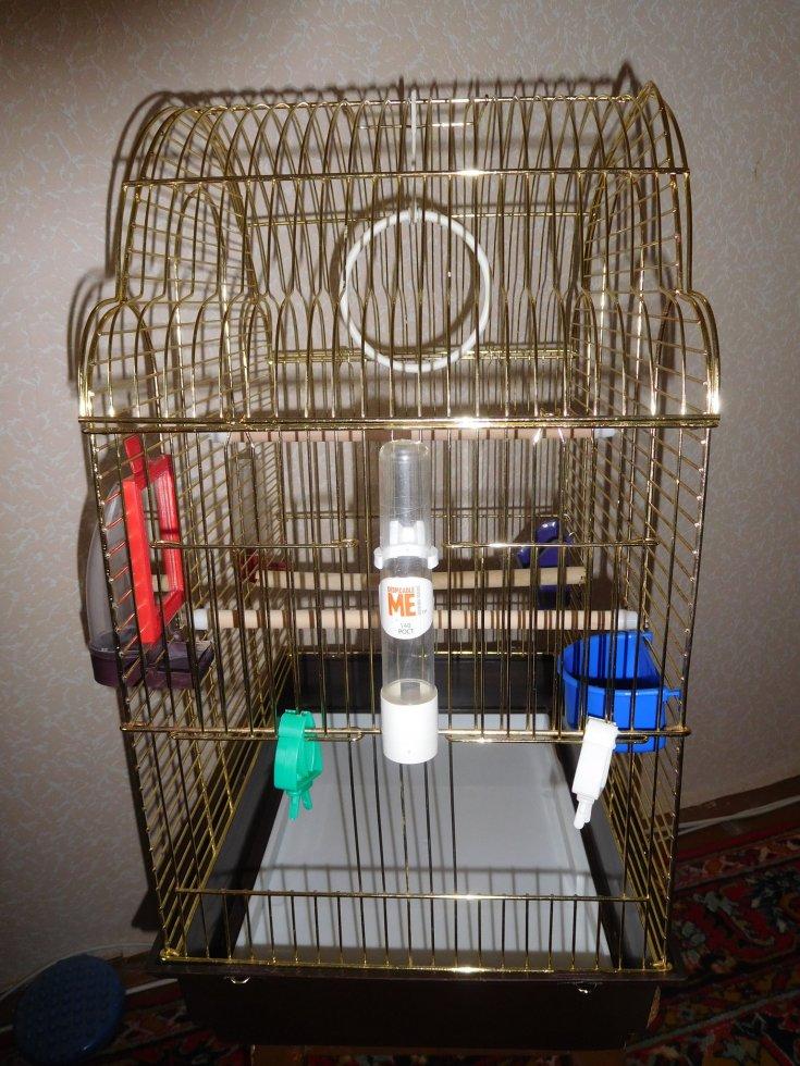 Делаем клетку для волнистого попугая своими руками