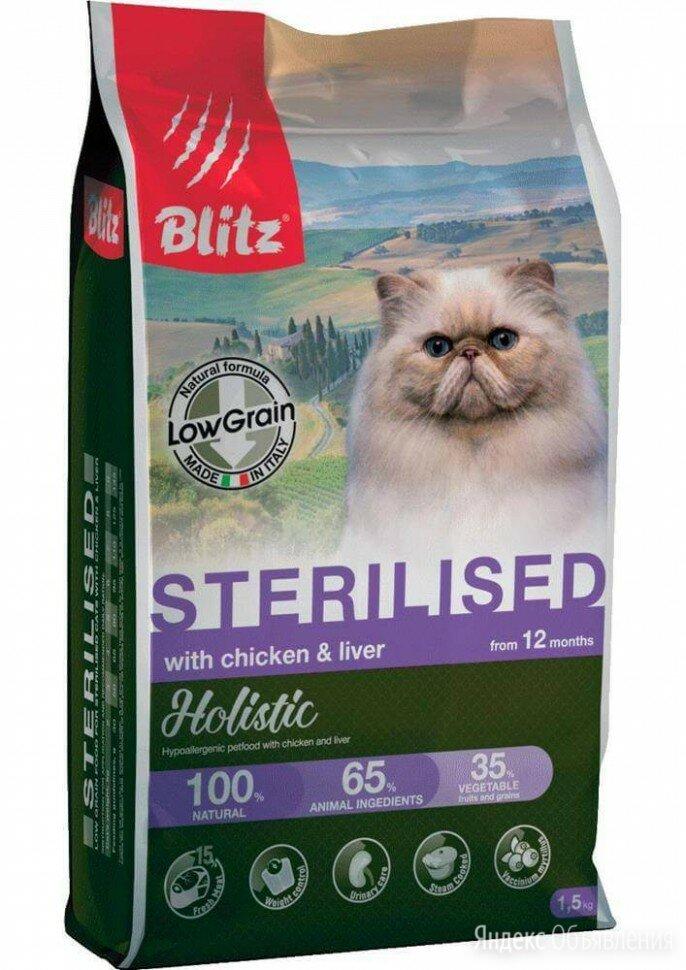 Корм для собак blitz holistic: отзывы, разбор состава, цена - петобзор