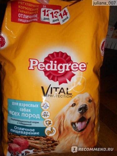 Корм педигри (pedigree) для собак