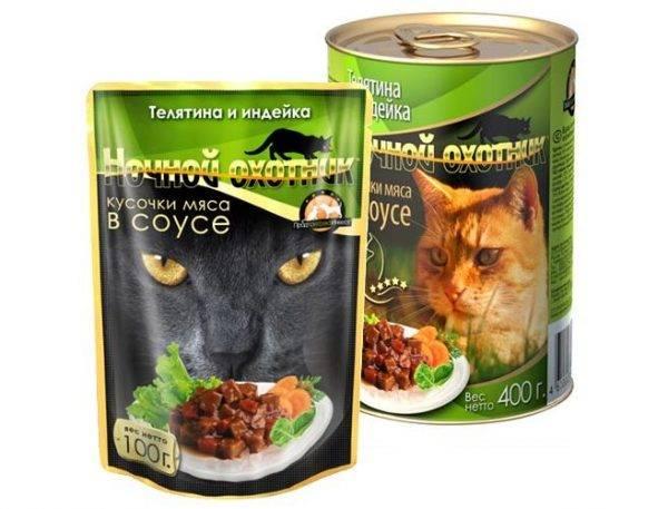 Корм для кошек «ночной охотник»: обзор, состав, ассортимент, плюсы и минусы, отзывы ветеринаров и владельцев