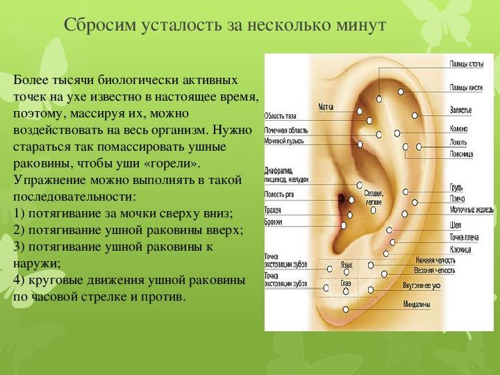 Одно ухо горячее другое холодное. к чему горит левое или правое ухо? медицина и приметы