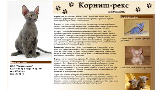 Донской сфинкс, котенок-браш — чем кормить