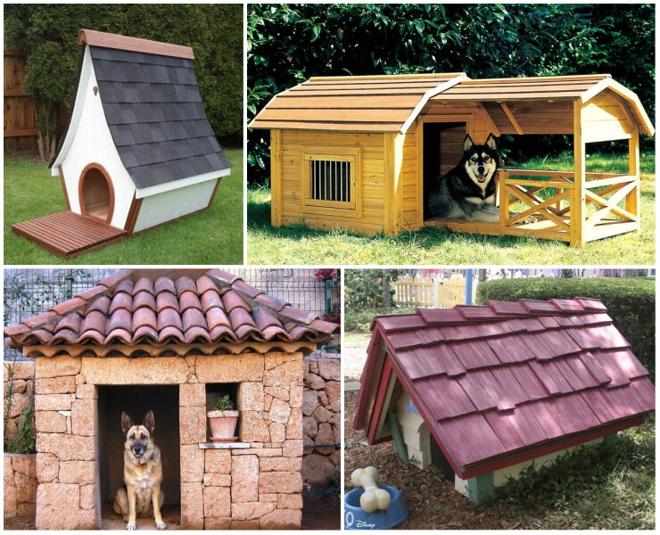Будка для собаки своими руками: как построить и где установить?