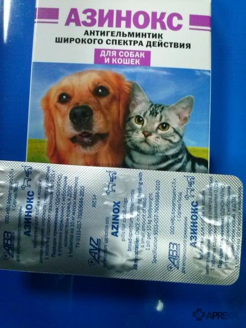 Глисты у щенков: что делать? лекарство от глистов щенкам - таблетки, суспензия, капли | нвп «астрафарм»
