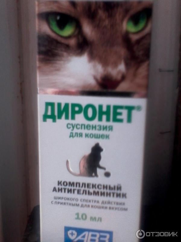 Диронет спот-он (капли) для кошек и собак | отзывы о применении препаратов для животных от ветеринаров и заводчиков