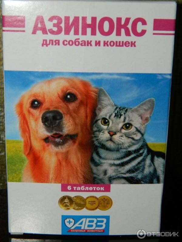 Азинокс для кошек: инструкция по применению, состав, дозировка и цена