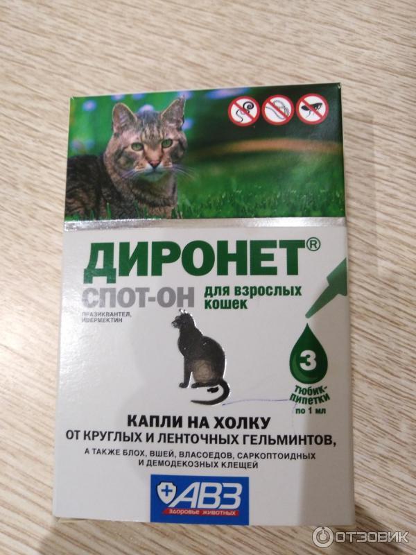 «диронет» для кошек: инструкция по применению, дозировка, противопоказания, аналоги, отзывы