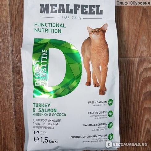 Рейтинг сухих кормов для кошек: топ лучших кормов 2021 года по мнению ветеринаров и независимых экспертов