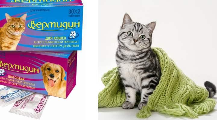 Вермидин для кошек, 2 таблетки упаковка
