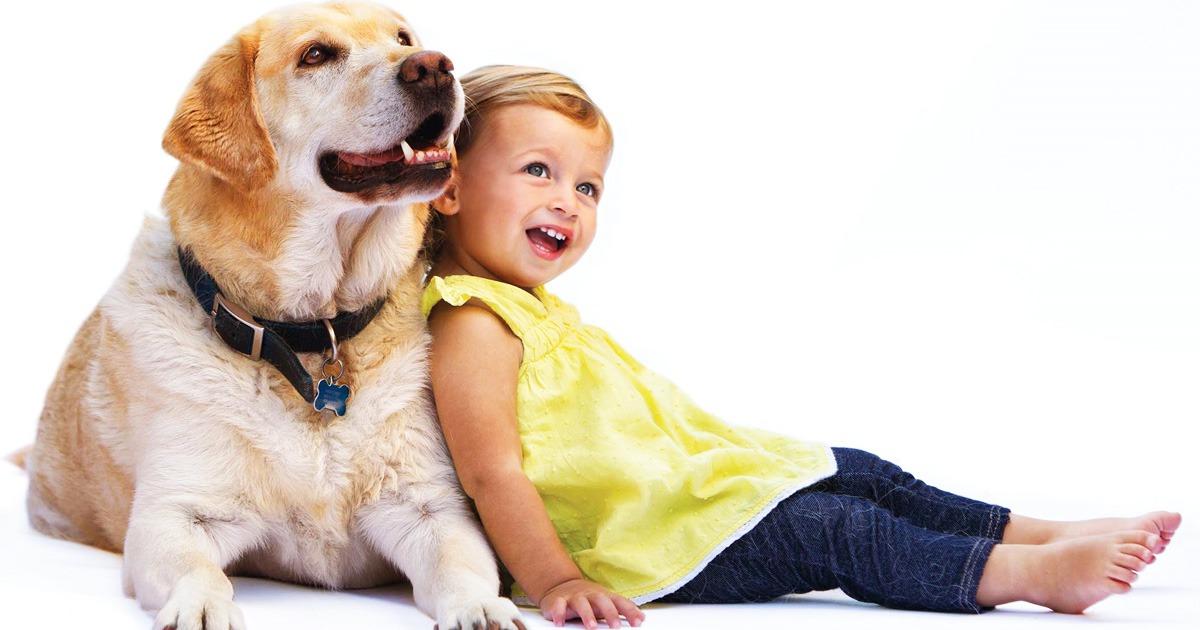 Топ-35 лучших пород собак для детей с фото   dogkind.ru