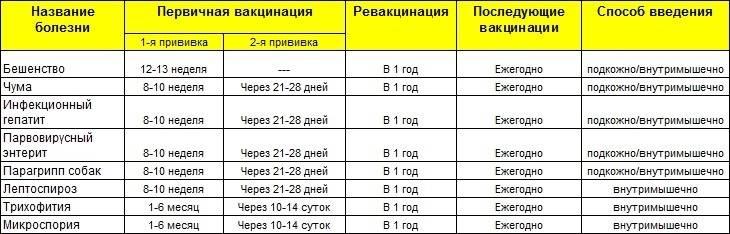 После какой прививки можно гулять с щенком: виды прививок, правила проведения вакцинации и безопасное время для выгуливания - truehunter.ru