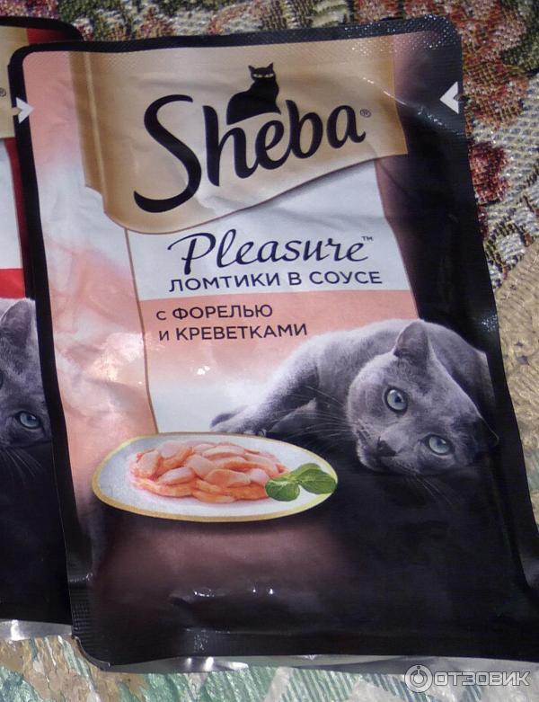 Влажный и сухой корм для кошек sheba: состав, отзывы ветеринаров, реклама