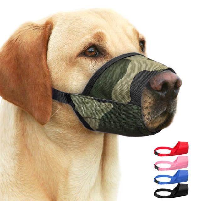 """Как подобрать намордник собаке   блог ветклиники """"беланта"""""""