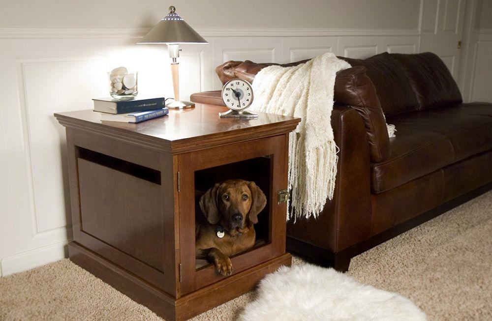 Как отучить собаку залезать на кровать? - секреты домашнего груминга