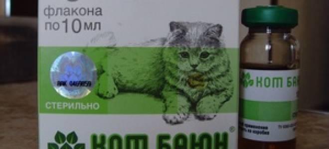Кот баюн для кошек: лечение агрессии и беспокойства в период течки +фото и видео