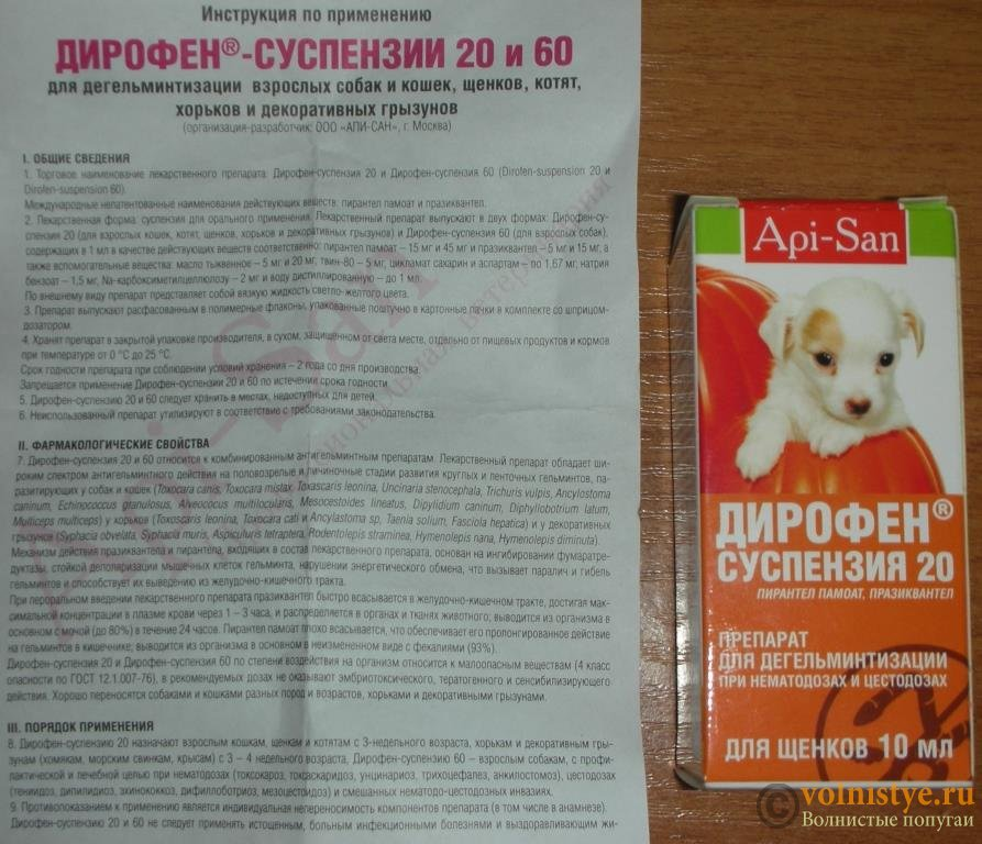 Лиарсин для кошек - инструкция к применению, дозировка - kotiko.ru