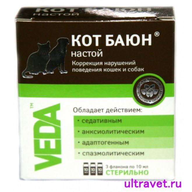 Кот баюн для кошек (таблетки, настой): инструкция по применению