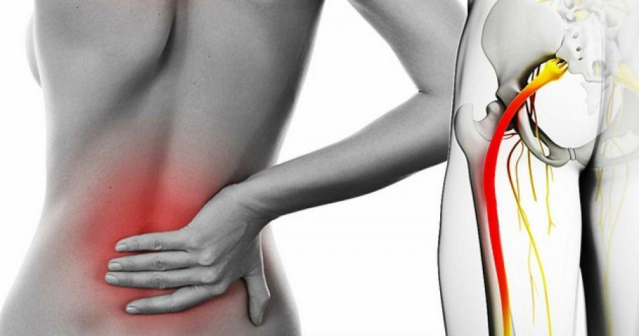 Паралич задних конечностей у собак: симптомы и лечение   как вылечить