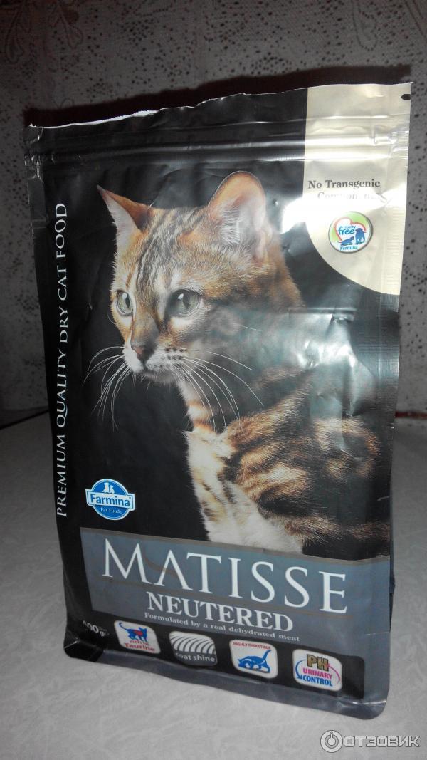 Matisse (матисс): обзор корма для кошек, состав, отзывы