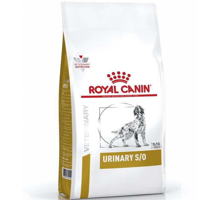 Все о кормах для собак мелких пород royal canin