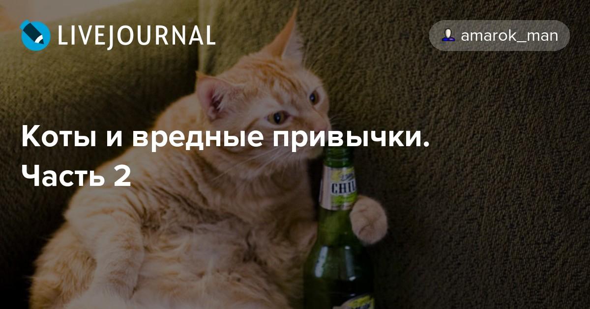 Как отучить кота от вредных привычек (н. непомнящий) [1991 - - альманах: ваши верные друзья. выпуск 1]