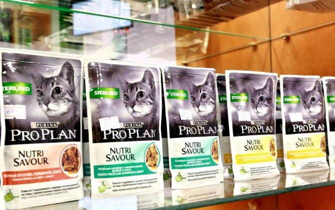 Корм для кошек пурина ван: особенности продукции и отзывы