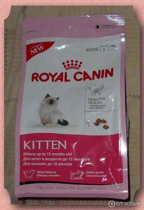 Сухой корм роял канин для кошек — какой бывает и что входит в состав