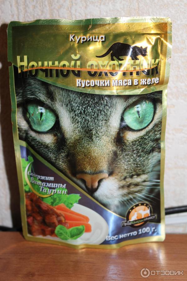 Корма для кошек «ночной охотник»: состав. корм для котят и стерилизованных кошек, сухой и влажный кошачий корм производителя. обзор отзывов