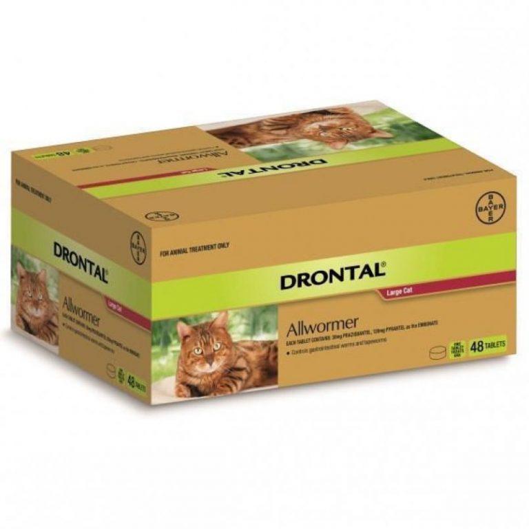 Дронтал для кошек: инструкция по применению, аналоги и отзывы