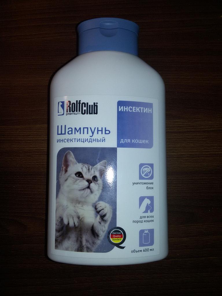 Лучшие корма холистики для кошки