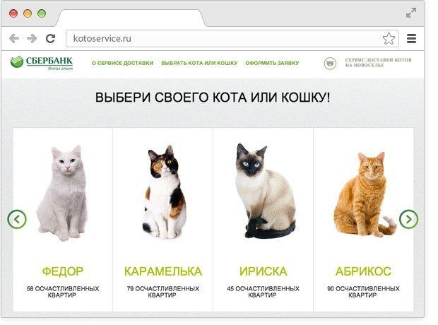 Кот или кошка: кого выбрать в квартиру и для ребенка