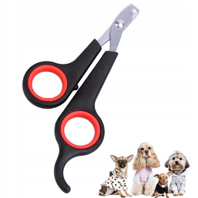 Ножницы для стрижки когтей у кошек (17 фото): как выбрать специальные ножницы и правильно постричь когти коту? можно ли стричь когти котенку обычными ножницами?