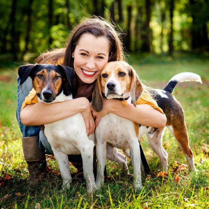 Лучшие породы собак для маленького ребенка — топ-10 | все о собаках
