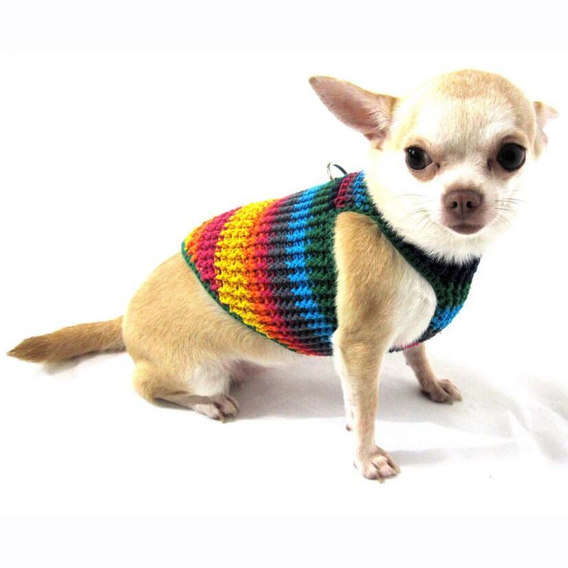Уход и содержание чихуахуа: как ухаживать за шерстью щенка в домашних условиях? особенности ухода за глазами и другими участками