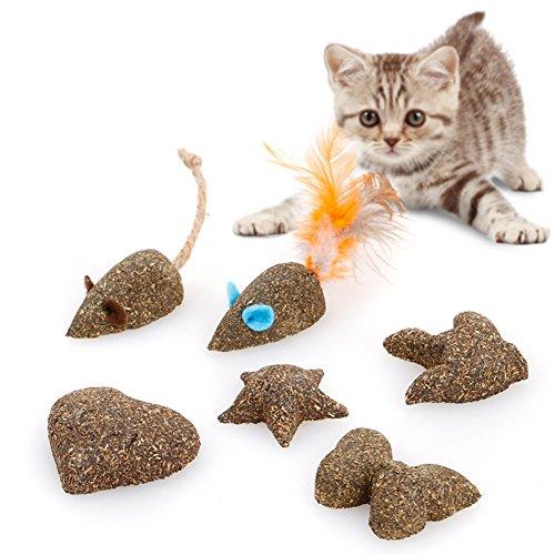 В статье описано, как сделать игрушки для котят своими руками (видео)