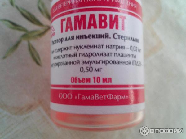 Укол злости: русская вакцина вызвала на западе приступ ярости