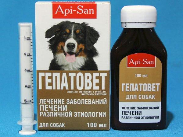 Гепатовет для собак: инструкция по применению, отзывы, стоимость