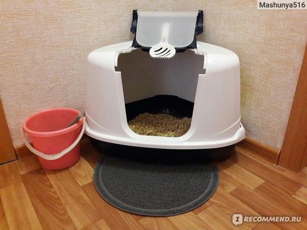 Топ-7 лучших туалетов (лотков) для кошек