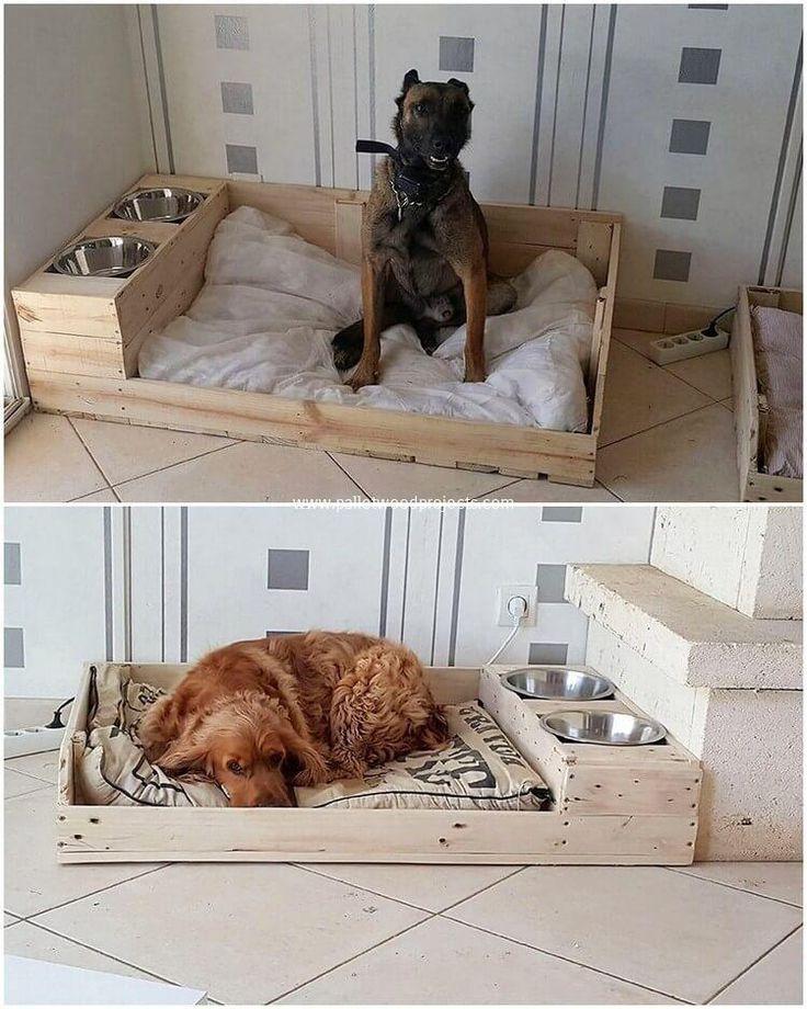 Как отучить собаку прыгать на кровать?