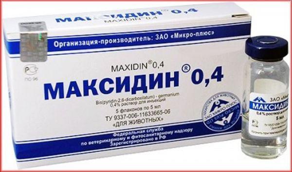 Как правильно применять максидин для котов?