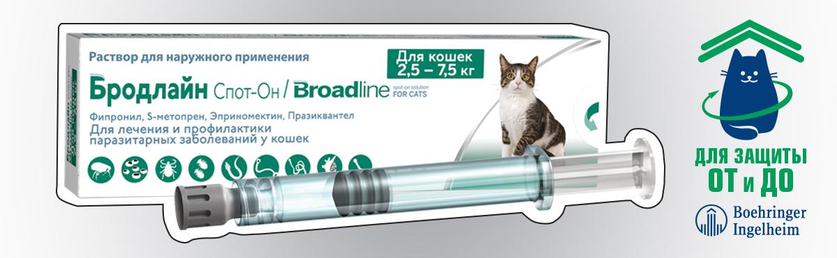 Фронтлайн спот он, капли на холку для кошек и собак